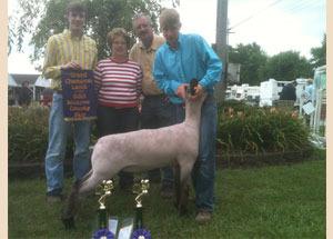 13-grand-champion-market-lamb-monroe-county-fair-brad-chapman