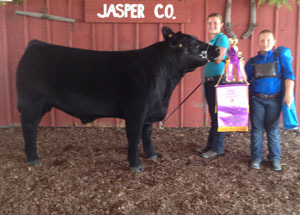 13-grand-champion-market-steer-champion-chianina-jasper-county-4h-beef-show-ashley-peterson
