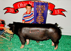 13-grand-champion-poland-china-gilt-ohio-state-fair-kai-warren