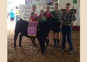 13-grand-champion-replacement-heifer-mason-county-richard-haga