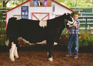 13-grand-champion-steer-athens-county-fair-hunter-smith