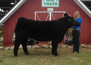 13-grand-champion-steer-graitot-county-fair-taylor-bolinger