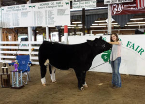 13-grand-champion-steer-monroe-county-fair-fairin-smith