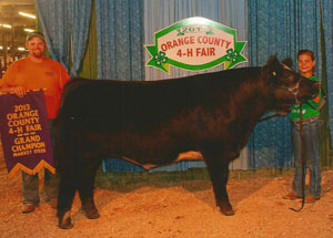 13-grand-champion-steer-orange-county-4h-fair-bailey-robbins