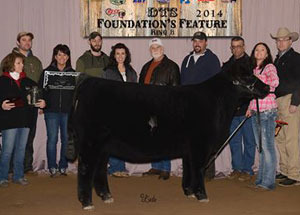 13-many-time-champion-heifer-ohio-best-program-rachel-conny