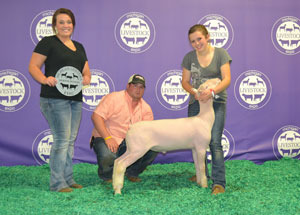 13-reserve-champion-dorest-michigan-livestock-expo-alexandria-schut