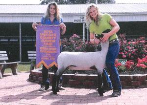 13-reserve-champion-lamb-mercer-county-taylor-muhlenkamp
