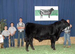 13-reserve-division-champion-bull-national-limmousin-show-zach-milam