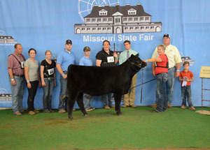 13-reserve-grand-champion-limousin-female-missouri-state-fair