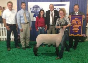 13-resrve-grand-champion-lamb-kentucky-state-fair-4h-and-ffa-sale-of-champions-allison-breeze