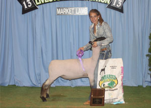 13-shropshire-breed-champion-tennesee-jr-livestock-expo-taylor-cox