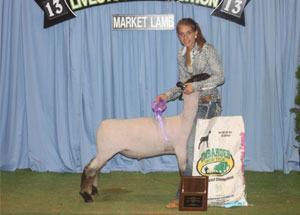 13-shropshire-breed-champion-tennesee-jr-livestock-expo-taylor-cox
