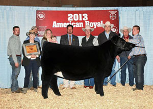 13-supreme-champion-heifer-amercian-royal-adam-acmoody