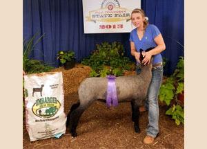 13-supreme-grand-champion-market-lamb-tennesse-state-fair-luci-allen-2