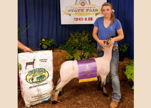 13-supreme-grand-champion-market-lamb-tennesse-state-fair-luci-allen