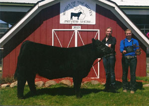 13-supreme-heifer-middle-of-mitten-show-morgan-bolinger