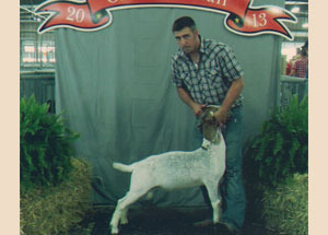 13-wether-sire-class-champion-ohio-state-fair-judd-ellinger