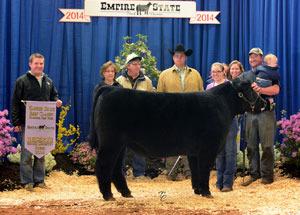14-reserve-champion-steer-empire-state-beef-classic-allison-gowanlock