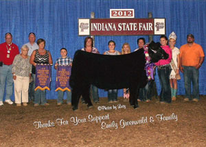 2012-5th-overall-steer-champion-maine-steer-indiana-state-fair-emily-greenwalt