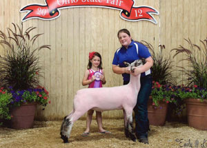 2012-champion-brockle-face-market-lamb-ohio-state-fair-lindsey-pfeiffer