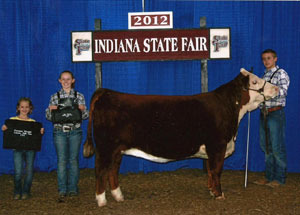 2012-champion-division-heifer-indiana-state-fair-sam-lawrence