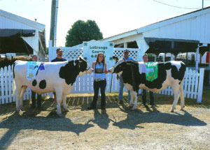 2012-grand-and-reserve-champion-dairy-beef-steer-lagrange-county-fair-hannah-myers