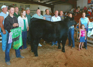 2012-grand-and-reserve-market-steer-lagrange-county-fair-lexi-myers