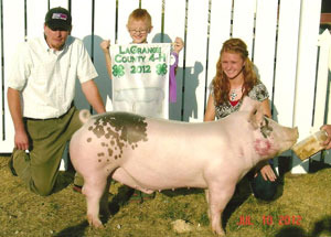 2012-grand-champion-barrow-lagrange-county-fair-chandra-slone