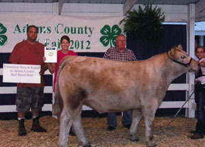 2012-grand-champion-born-and-raised-steer-adams-county-fair-alana-nussbaum