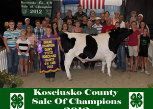 2012-grand-champion-dairy-steer-kosciusko-county-fair-jared-templin