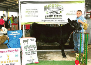 2012-grand-champion-feeder-calf-lawrence-county-fair-chad-morris