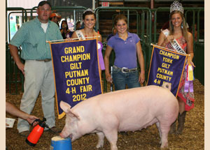 2012-grand-champion-gilt-putname-county-fair-raegan-bowling