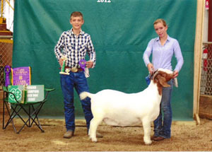 2012-grand-champion-market-almb-grand-champion-boer-doe-clark-county-fair-breann-hendrickson—2