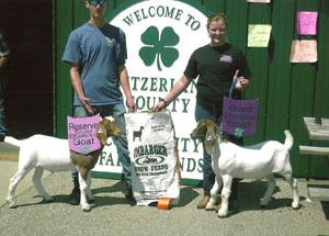 2012-grand-champion-market-goat-switzerland-county-fair-korah-taylor