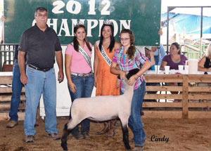 2012-grand-champion-market-lamb-cass-county-fair-abigail-critchelow