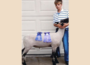 2012-grand-champion-market-lamb-cumberland-county-regional-fair-kade-allen