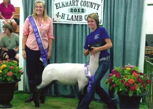 2012-grand-champion-market-lamb-elkhart-county-fair-marissa-lorenz