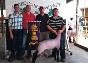 2012-grand-champion-market-lamb-grant-county-fair-burr-worl