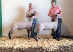 2012-grand-champion-market-lamb-huron-county-fair-megan-hunker