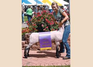 2012-grand-champion-market-lamb-mercer-county-fair-karissa-will