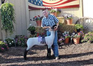 2012-grand-champion-market-lamb-ottawa-county-fair-micah-mensing