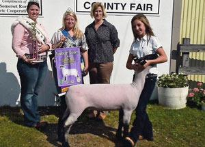 2012-grand-champion-market-lamb-somerset-county-fair-madison-mckinley