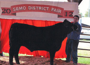 2012-grand-champion-market-steer-SEMO-district-fair-gavin-seyer