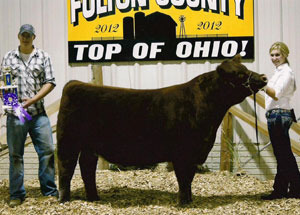 2012-grand-champion-market-steer-fulton-county-fair-emily-herring