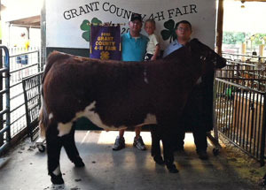 2012-grand-champion-market-steer-grand-county-fair-burr-worl