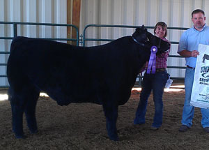 2012-grand-champion-market-steer-macon-county-fair-kaitlyn-anderson