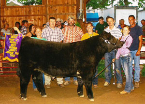 2012-grand-champion-market-steer-medina-county-fair-emily-klotzscne