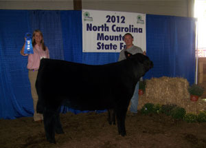 2012-grand-champion-market-steer-north-caolina-mountain-state-fair