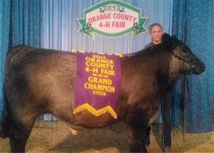 2012-grand-champion-market-steer-orange-county-fair-whitney-holsapple