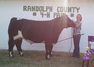 2012-grand-champion-steer-randolph-county-fair-allison-baldwin